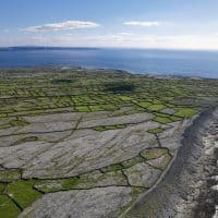 green fields and cliffs on one of the aran islands