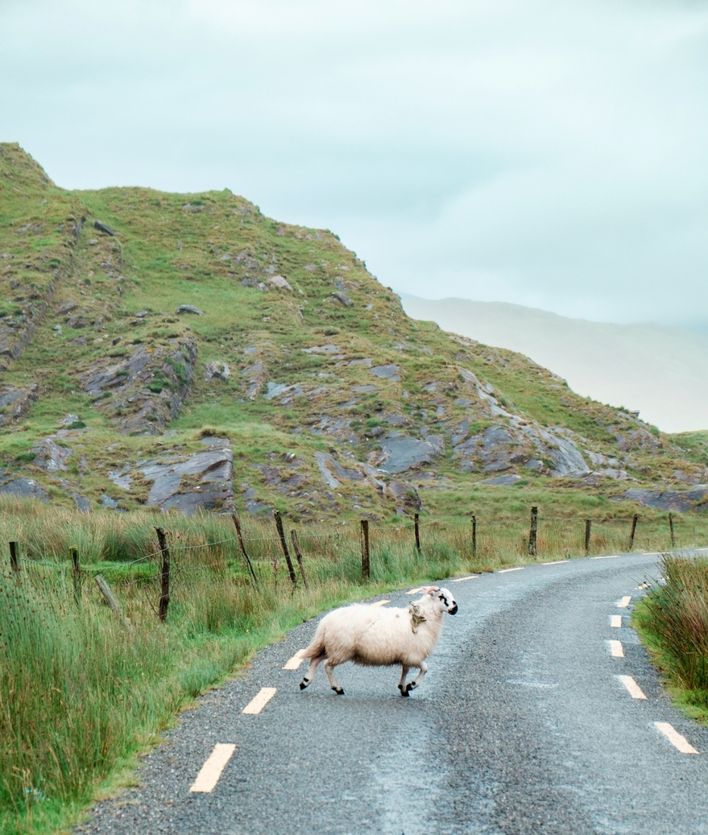 Traffic in County Kerry
